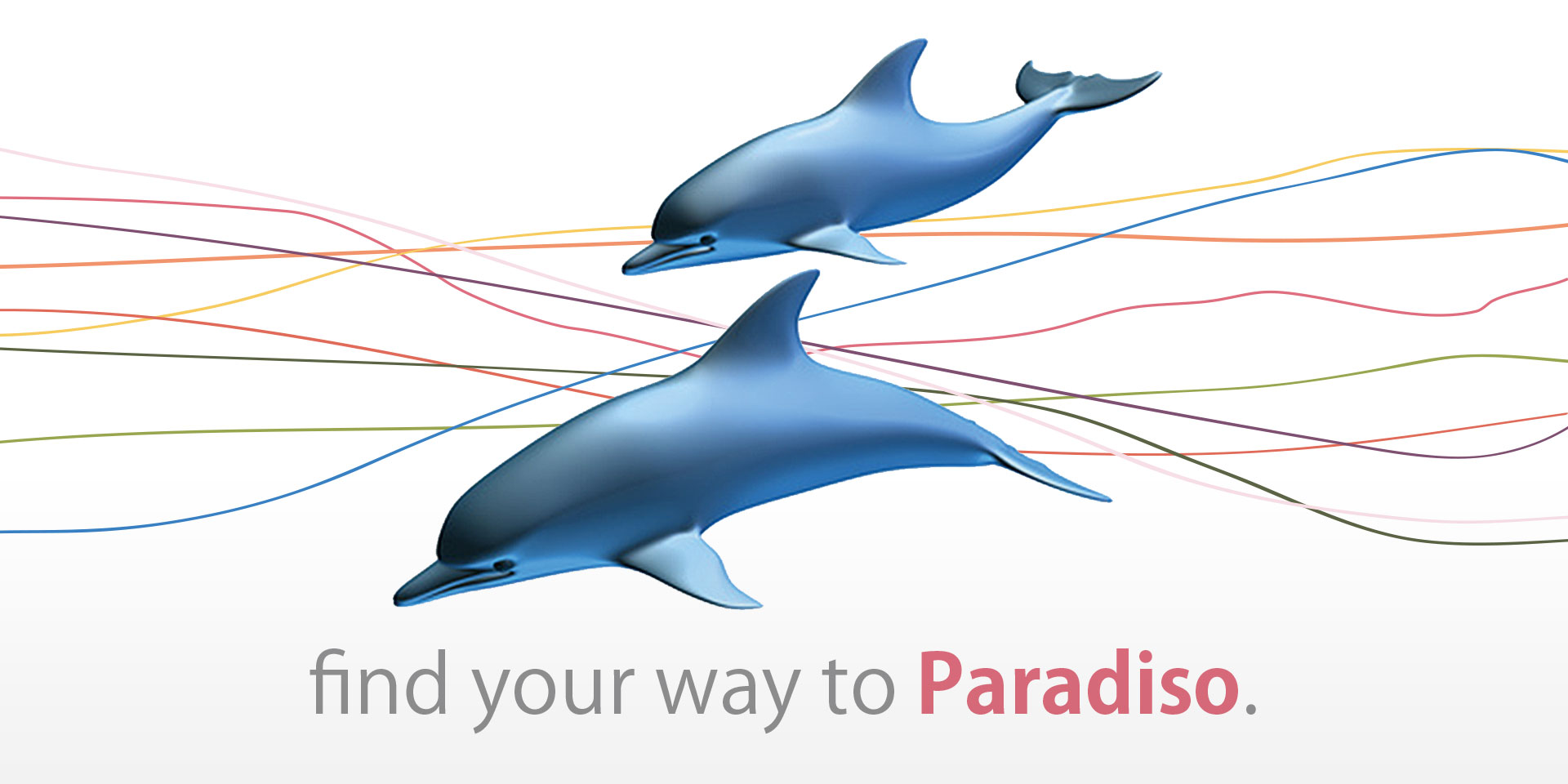 find your way to paradiso